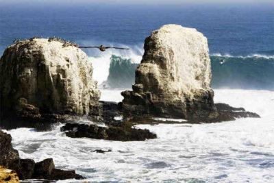 L'eau lourde, est-ce le récif le plus lourd d'Amérique centrale ?